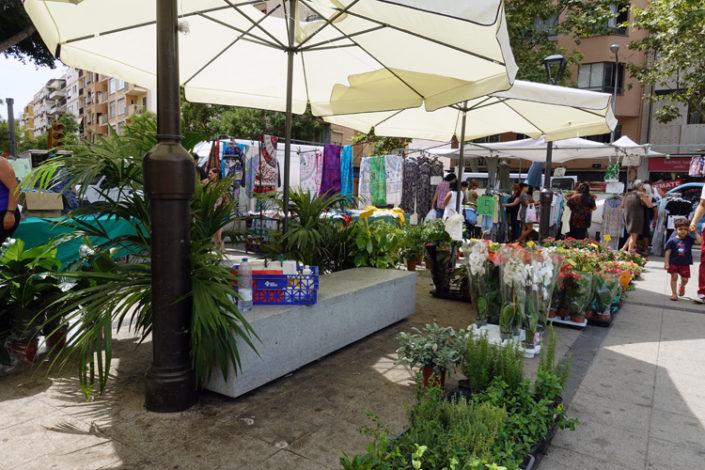Markt-Pere-Garau-Pflanzen